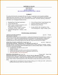 Professional Summary Resume Sample Beautiful Resume Professional ...