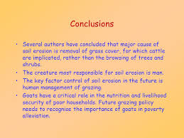 goats and soil erosion the evidence ppt video online 22 conclusions several authors have concluded that major cause of soil erosion