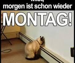 Montag Spruch Lustig Fürs Handy Kostenlos Downloaden Gb Pics