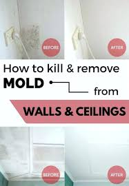 cleaning mold off walls how to clean mold off painted walls in bathroom cleaning mold off
