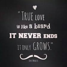 Beard Quotes Classy Beard Quotes Google Zoeken Beards Pinterest Beard Quotes