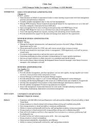 business admin resume business administrator resume samples velvet jobs