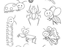 Coloring Pages Of Insects Predragterziccom