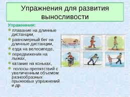 Презентация по физической культуре на тему Физические качества и  Упражнения для развития выносливости Упражнения плавание на длинные дистанци