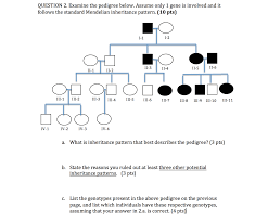 Inheritance Patterns Extraordinary Solved A What Inheritance Pattern That Best Describes Th