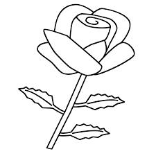 Kleurplaten Mandala Rozen Ausmalbilder Ehe Bild Ehe Diddl