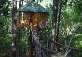 Redwood Treehouse Santa Cruz Mountains On Airbnb 125night Treehouse Vacation California