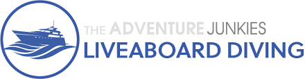 The 5 Best Galapagos Liveaboard Diving Trips The Adventure