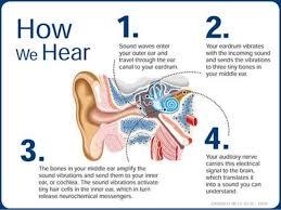 Hearing Impairment Hearing Impairment