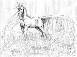 Coloring was done with water based markers crayola brand. Realistic Unicorn Coloring Pages Coloring Home