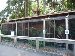 I like this enclosure for wildlife rehabilitation  http://www.bing.com/images/search?q =Dog+Houses+Product&FORM=R5FD18#view=detail&id=2FDADFB6366A0F