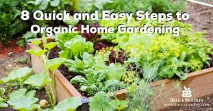 Small Picture Garden Design Garden Design with ideas about Organic Gardening