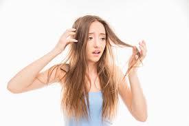 「乾燥 髪」の画像検索結果