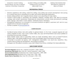 Comfortable Resume Writing Jobs Nyc Photos Example Resume And