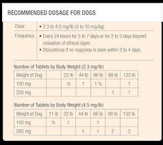 Cerenia Dosage Chart For Dogs Www Bedowntowndaytona Com