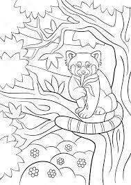 Kleurplaten Kleine Schattige Rode Panda Eet Bladeren Stockvector