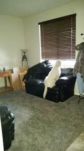 20160108_154024 Front Room Furniture28