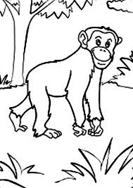 Small Picture Chimpanzee Walking in the Jungle Coloring Page Coloring Sun