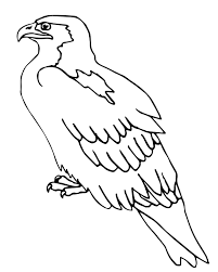 Small Picture Perched Barn Owl Coloring Pages Printable Animal Coloring pages