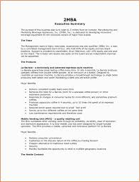 Project Summary Report Example Project Management Report Example Executive Summary Report Template 22