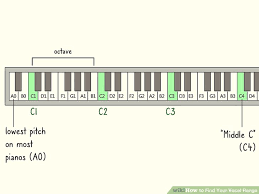 6 Easy Ways To Find Your Vocal Range With Pictures