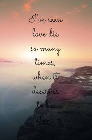 Sea Quotes Awesome Love Of Sea Quotes Managementdynamics