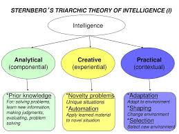 Sternberg Intelligence Albert Einstein Maybe Ppt Download