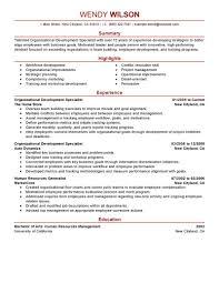 Leadership Resume Sample Skills Samples Senior Executive Examples