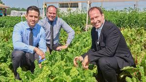 montreal supermarket opens huge organic
