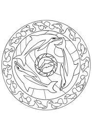 Kleurplaat Dolfijnen Mandala Kopen Zippytoys