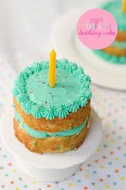 Mini Funfetti Birthday Cakes A Birthday To Remember Small