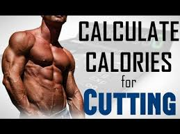 calculate macros daily caloric intake for cutting lose weight fast hindi fitness rockers you