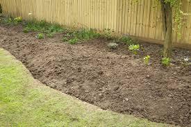 12 garden border planting ideas for