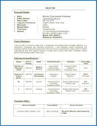 Resume Special Education Teacher Resume Sample