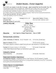 Awesome Collection Of School Counselor Resume Samples Charming
