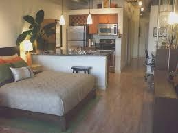 interior design small one bedroom apartment decorating ideas unique best in interior design engaging photograph