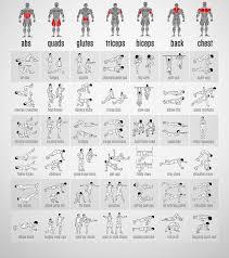 Exercise Chart For Men Best Full Body Exercises Best Laptop