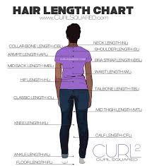 Hair Growth Length Chart Hair Length Chart Hair Length Chart Hair Lengths Natural