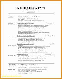 Wordpress Resume Theme Unique 30 Resume Examples Free Graphics