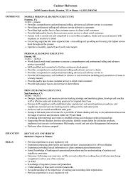 Banking Executive Resume Banking Executive Resume Samples Velvet Jobs 3