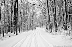 black and white snow photography.  Snow Zoom Inside Black And White Snow Photography A