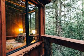 Treehouse Pictures Eagles Nest Treehouse Farmstay Salmon Creek Ranch Ca 64