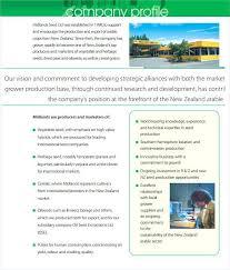 Company Profile Sample Download Beauteous Corporate Profile Template Vector Company Profile Infographic