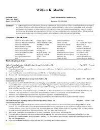 Professional Resume Service With Great Resume Writers Wanted Ideas