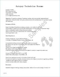Sample Declaration Letter Format Theunificationletters Com