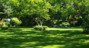 we are a family owned and operated private garden centrally located in the rogue valley step onto our ious grounds and explore the possibilities for