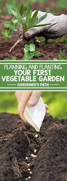 if you re new to the world of vegetable gardening you re in