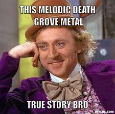 DIYLOL - THIS MELODIC DEATH GROVE METAL TRUE STORY BRO via Relatably.com