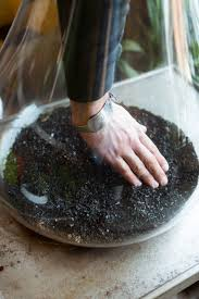 add a layer of activated charcoal also called horticultural charcoal to your terrarium before adding soil it s available from nurseries and pet s