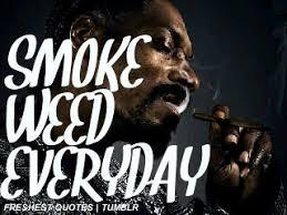 Snoop Dogg Quotes Shizzle. QuotesGram via Relatably.com